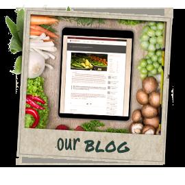 ourblogs